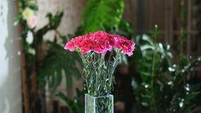 Blomma buketten i strålarna av ljus, rotation, den blom- sammansättningen består av ljus rosa turkisk nejlika i lager videofilmer
