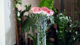 Blomma buketten i strålarna av ljus, rotation, den blom- sammansättningen består av ljus - rosa turkisk nejlika i lager videofilmer