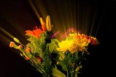 Blomma bukettskönhet som ut kommas med av special belysning och filtreratekniker Royaltyfri Fotografi