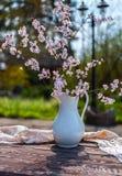 Blomma cherykvistar i den vita vazen på oskarp naturlig bakgrund i trädgård fotografering för bildbyråer