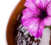 Blomma closeupen och en träbunke av vatten Arkivbild
