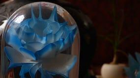 Blomma Cristal royaltyfri foto