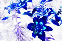 blomma 3d Arkivfoton
