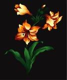 Blomma design 1 Vektor Illustrationer