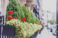 Blomma detaljen av en gata i Mayfair, i ett rikt område av Lon Fotografering för Bildbyråer