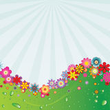 blomma för 5 bakgrund Arkivbilder
