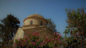 Blomma för blå himmel för träd och liten gammal kyrka royaltyfri foto