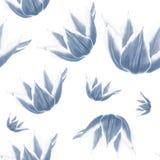 Blomma för blå tulpan på vit bakgrund Sömlös vattenfärgmodell royaltyfri illustrationer