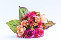 Blomma för en trevlig dag. Arkivfoton