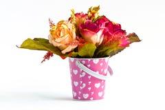 Blomma för en trevlig dag. Royaltyfri Fotografi