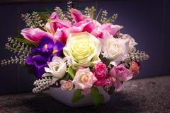 Blomma för förälskelsevalentin Royaltyfria Bilder