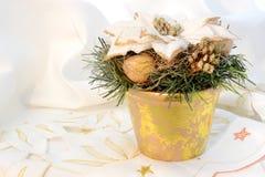 Blomma för nytt år Royaltyfria Bilder