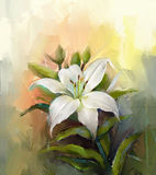 Blomma för vit lilja Olje- målning för blomma Royaltyfri Bild