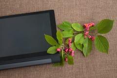 Blomma filialen på skrivbordet med minnestavladatoren med en bla Arkivfoto