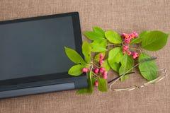 Blomma filialen på skrivbordet med minnestavladatoren och glasse Fotografering för Bildbyråer