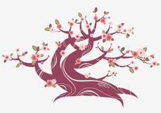 blomma fjädertree stock illustrationer