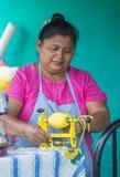 Blomma & gömma i handflatan festivalen i Panchimalco, El Salvador Royaltyfria Bilder