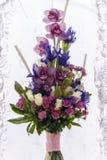 Blomma i is Arkivbilder