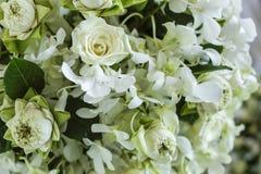 Blomma i bröllopinställning Arkivfoton