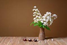 Blomma i en keramisk vas Arkivbilder
