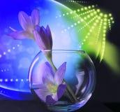 Blomma i en rund vas Royaltyfri Foto