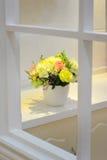 Blomma i fönster royaltyfri fotografi