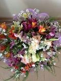 Blomma i hus Royaltyfria Bilder