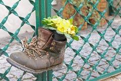 Blomma i kängorna Fotografering för Bildbyråer