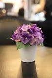 Blomma i krus fotografering för bildbyråer