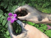 Blomma i svarta händer royaltyfria foton