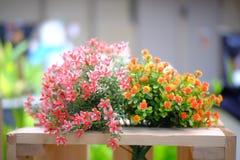Blomma i trädgård Royaltyfri Bild