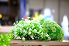Blomma i trädgård Arkivfoton