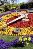 Blomma klockan i Genève, Schweiz, klockadanandetradition royaltyfri foto
