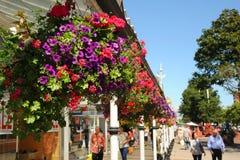 Blomma korgar på Southport för den huvudsakliga gatan den blom- staden Merseyside Royaltyfria Foton
