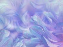 Blomma kronblad på en suddig blått-violett färgrik bakgrund alla några objekt för den blom- illustrationen för sammansättningsele Royaltyfria Foton