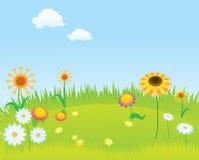 blomma lawn för bakgrund vektor illustrationer