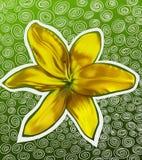 blomma lilly royaltyfri illustrationer