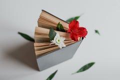Blomma mellan sidorna av boken royaltyfri fotografi