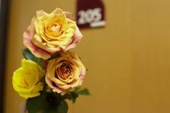 Blomma, när du besöker sjukhuset Royaltyfria Foton