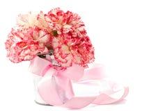 blomma nejlikapink Arkivfoto