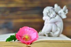 Blomma och ängel arkivbild