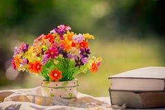 Blomma och bok på naturen Arkivfoto