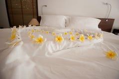 Blomma och sängepos Thailand Royaltyfri Fotografi