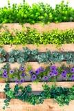 Blomma och staket Arkivbild