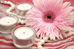 Blomma och stearinljus Fotografering för Bildbyråer