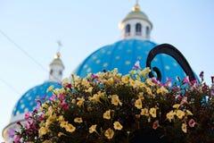 Blomma- och Troitsky domkyrka på bakgrunden Arkivbild