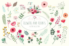 Blomma- och växtsamling Royaltyfri Fotografi