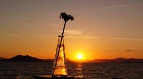 Blomma och vas i solnedgång Royaltyfri Fotografi