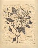 Blomma - original- träsnitt Royaltyfri Fotografi