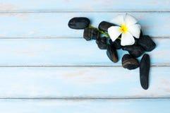 Blomma på den svarta stenen på trägolv Arkivbild